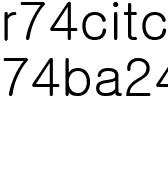 Reflective track Pants (black)
